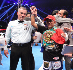 Roman Gonzalez : Best Boxer or Best Puncher?
