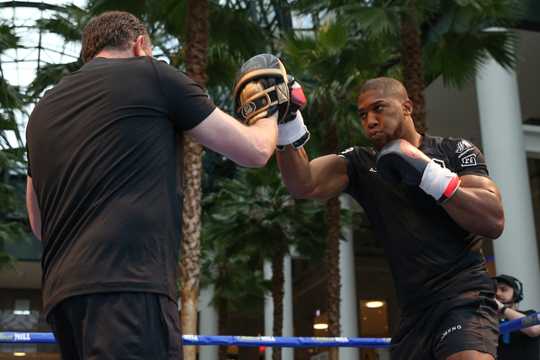 Anthony Joshua vs Andy Ruiz Jr: public workout photo gallery (world title fights)